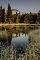 Cottonwood Slough, Jasper National Park, photo