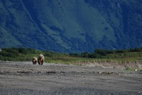 Katmai National Park, Alaska, USA photo