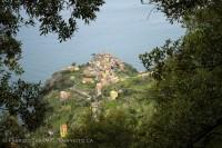 Corniglia, italy, cinque terre photo