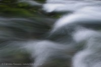 Maligne River, Jasper National Park, Alberta, Canada photo