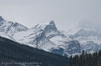 Jasper National Park, Alberta, Canada,Queen Elizabeth Range photo
