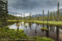 kootenay plains alberta, rocky mountains photo