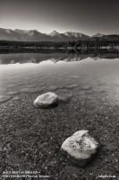 Jasper National Park, Alberta,patricia lake, pyramid island photo