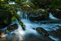 Bajos del toro, bosque de paz, Costa Rica photo