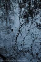 Mill Creek Impression, photo