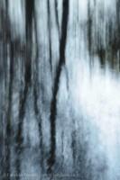Mill Creek Impression, prints photo