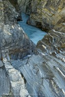 North Saskatchewan River,Near Coleman Creek, Jasper National Park photo