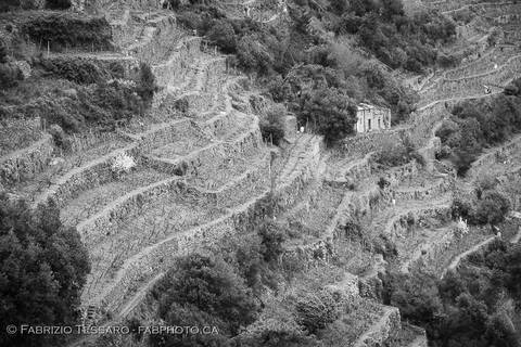 Corniglia Hiking Trail