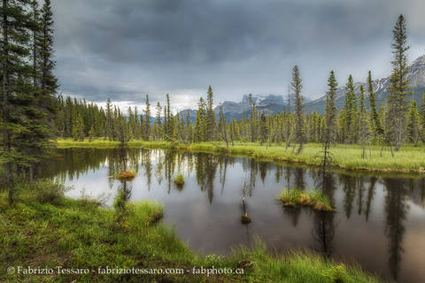 kootenay plains alberta, rocky mountains