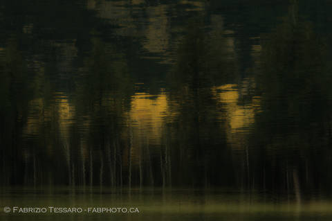 Jasper National Park, Lac Beauvert,