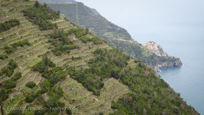 Corniglia,Manarola, Hiking Path,italy, cinque terre photo