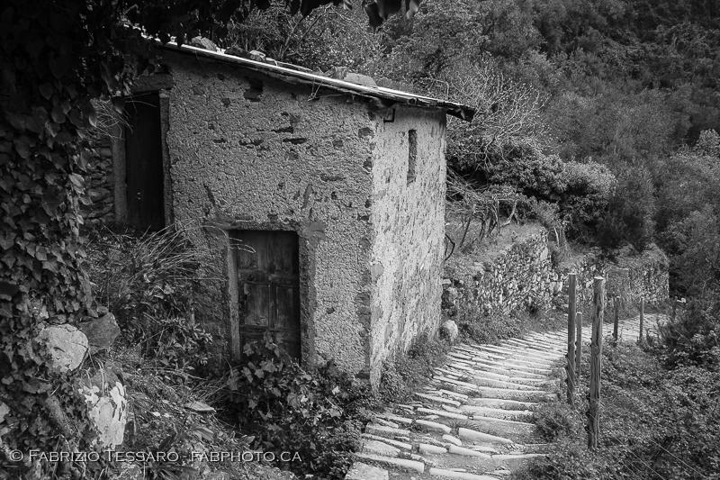 Manarola, Cornioglia, Riomaggiore,  italy, cinque terre photo