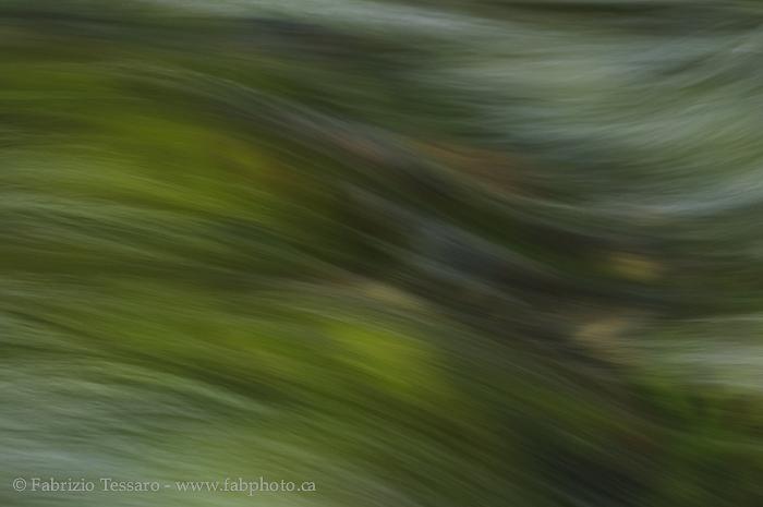 Jasper National Park, Alberta, Canada, Maligne River,  photo