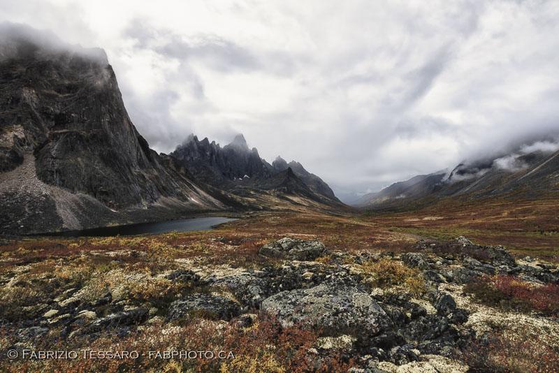 Tombstone Territorial Park, Yukon Territories, Canada, Talus Lake, Grizzly Lake, Divide Lake,Yukon Fall Colours, colors photo