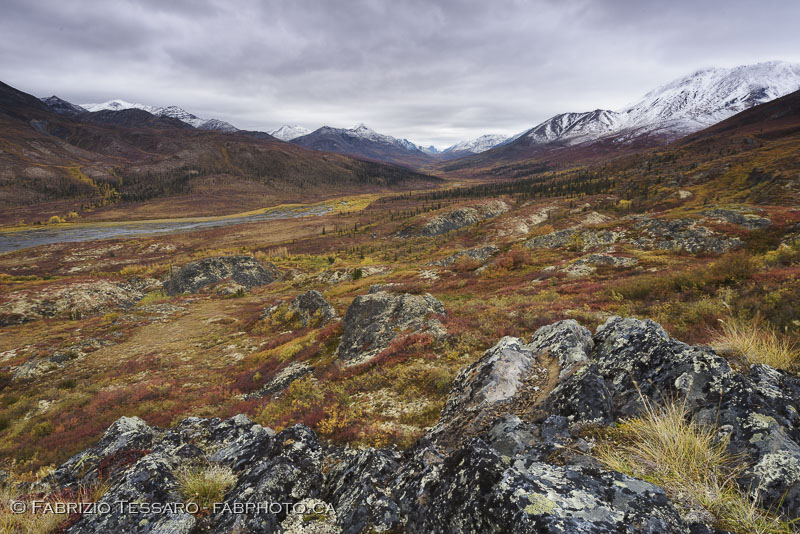 Tombstone Territorial Park, Yukon Territories, Canada, Talus Lake, Grizzly Lake, Divide Lake,Yukon Fall Colours, colors photo