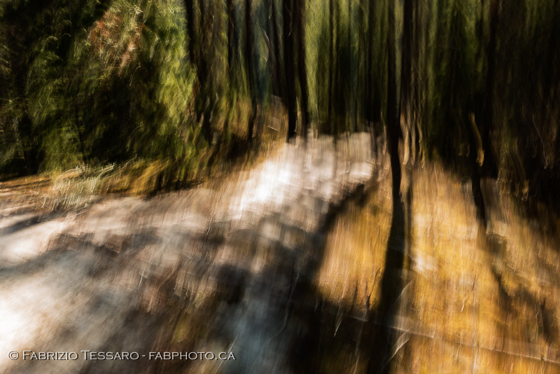 Jasper National Park, Horseshoe, winter, abstract, impression photo