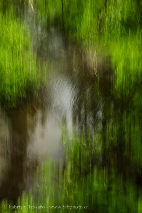 Mill Creek, Edmonton, Alberta, Canada photo