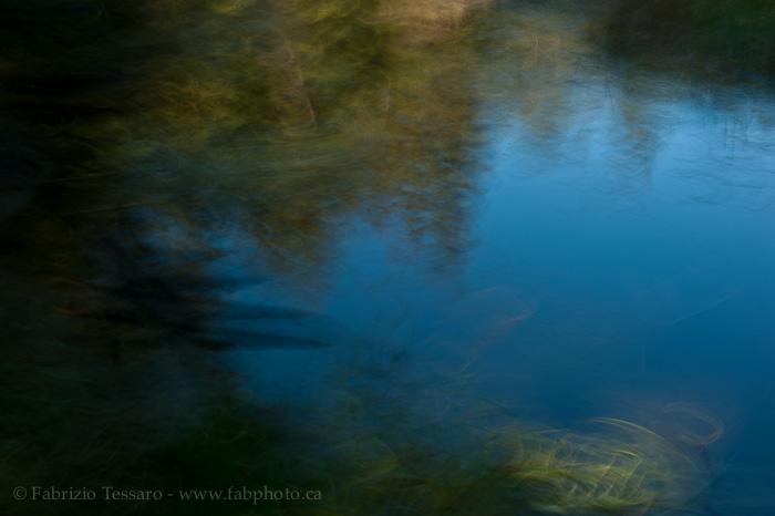 Whitemud creek, Edmonton, Alberta, photo