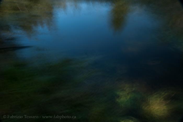Whitemud creek, Edmonton, Alberta , photo