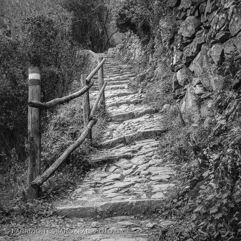 Manarola,Corniglia, italy, cinque terre, photo