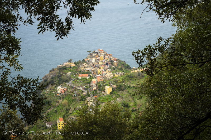 Corniglia, italy, cinque terre, photo