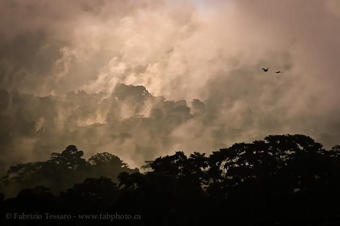 Arenal Volcano National Park, Costa Rica, photo