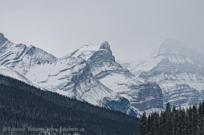 Jasper National Park, Alberta, Canada,Queen Elizabeth Range, photo