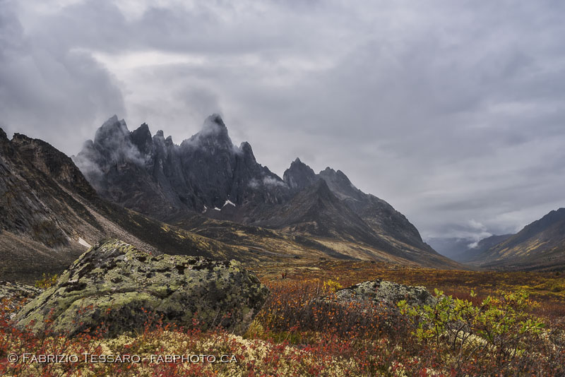 Tombstone Territorial Park, Yukon Territories, Canada, Talus Lake, Grizzly Lake, Divide Lake,Yukon Fall Colours, colors, photo