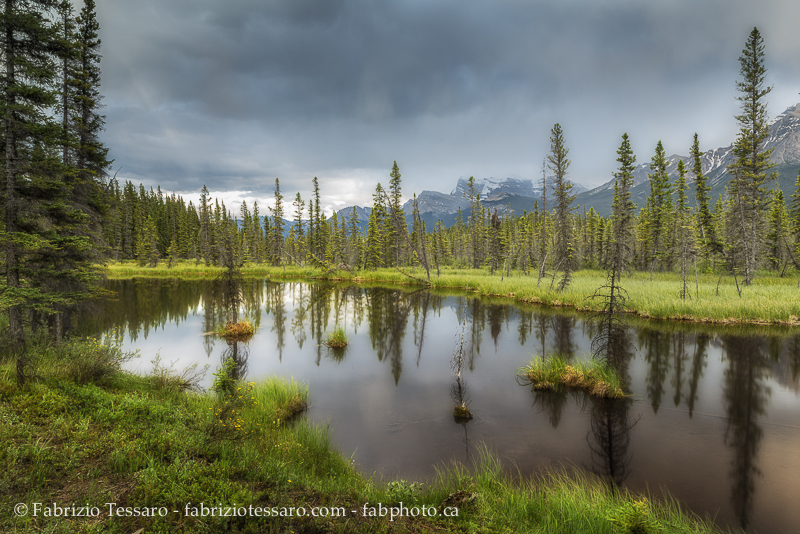 kootenay plains alberta, rocky mountains, photo