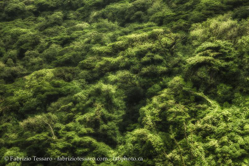 Costa Rica, photo