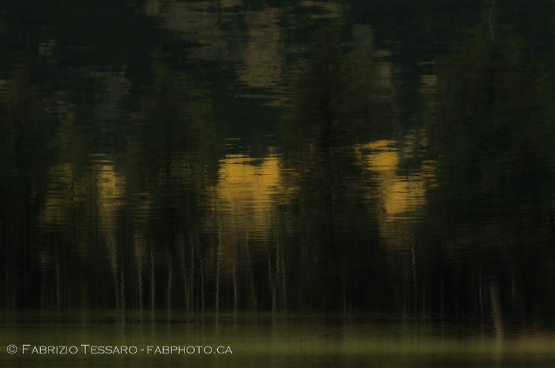 Jasper National Park, Lac Beauvert,, photo