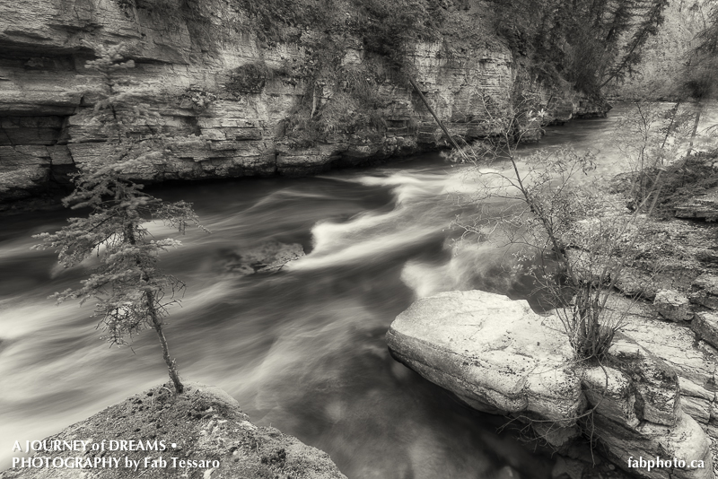 Maligne River,Jasper National Park, Alberta, photo