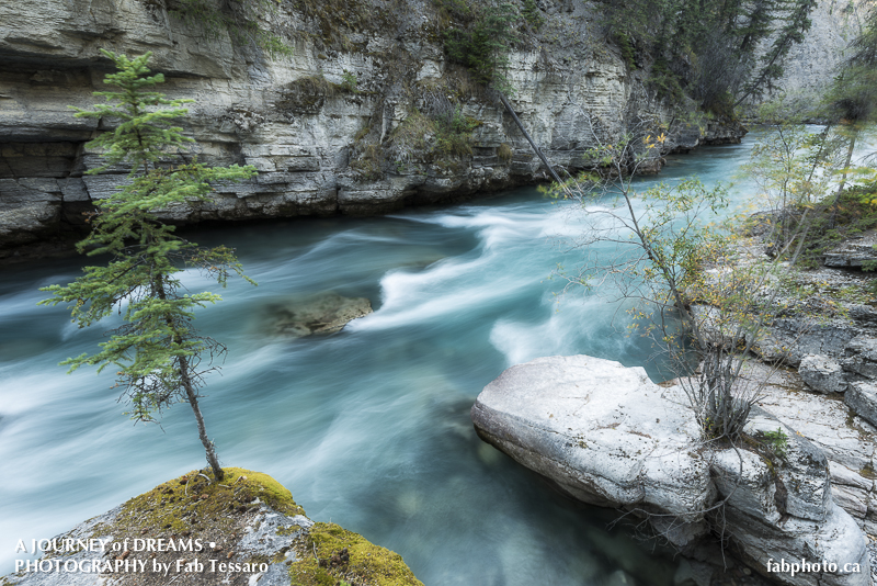 Alberta,Jasper National Park,Maligne Canyon,Maligne River,Mountains,Patricia Lake,Pyramid Lake,Sunrise,fine art prints