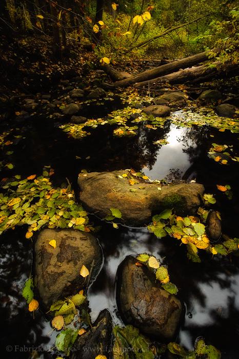 Mill Creek, Edmonton, , photo