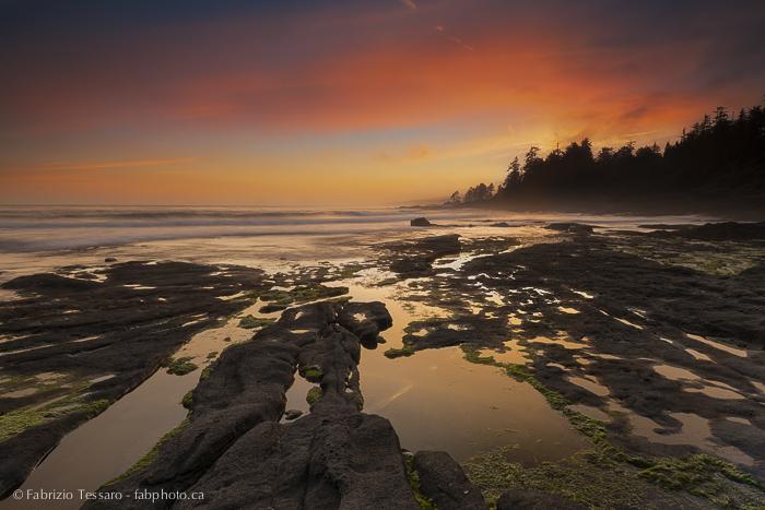 Port Renfrew,Vancouver Island,Botanical Beach,, photo