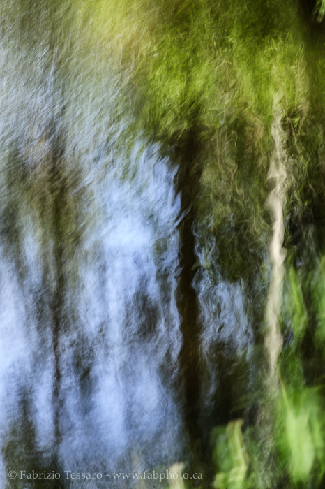 Mill Creek, Edmonton, Alberta, Canada, photo