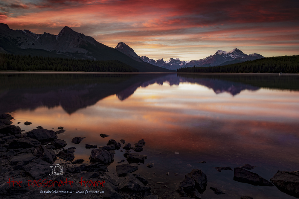 This was my last morning at Maligne Lake and it had been cloudy and overcast for the last 3 days.  The colors were amzing on...